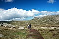 Path to Mt Kosciuszko 1 (1).jpg
