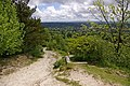 Path up Colley Hill - geograph.org.uk - 1316031.jpg