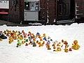 Peak Chair ducks (8511725654).jpg