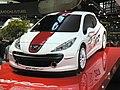 Peugeot207RCCup1.JPG