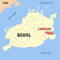 Map of Bohol with Candijay highlighted