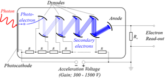 Secondary emission - Secondary emission used in a photomultiplier tube. The initial electrons emitted when light strikes a photocathode are made to strike a dynode electrode, knocking out more electrons, which strike a second dynode.  Each incident electron produces multiple secondary electrons, so the cascaded dynode chain amplifies the initial electrons.