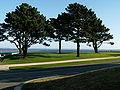 Pins front de mer Brest.jpg