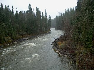 Midwestern Canadian Shield forests Boreal coniferous forest ecoregion in central Canada