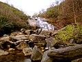 Pisgah National Forest (8143263544).jpg