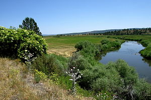 Pit River - Upper Pit River near Alturas