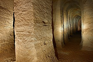 Piusa koopad 2011 09.jpg