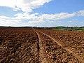 Ploughed field near Aish.jpg