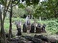 Poaki O Rae stone circle, Aitutaki, Cook Islands.jpg