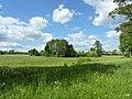 Pola uprawne nad brzegiem jeziora. - panoramio (3).jpg