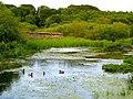 Portavo Reservoir 1 - geograph.org.uk - 463616.jpg