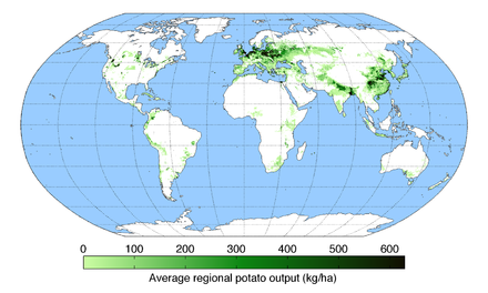 Global production of potatoes in 2008 PotatoYield.png