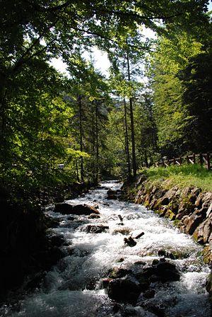 Stream - Rocky stream in Italy