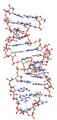 Pre-mRNA-1ysv.png