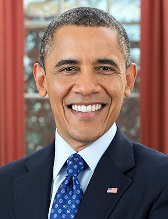 Presidency of Barack Obama - Official portrait of Barack Obama.