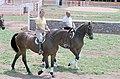 President Ronald Reagan riding horses with President Joao baptista de Oliveira Figueiredo of Brazil.jpg