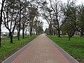 Prydniprovskyi Park (13.04.19).jpg