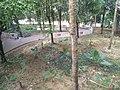 Putrajaya Botanical Garden in Malaysia 13.jpg