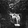 Queensland State Archives 402 Elabana Falls Canungra Creek West Branch Lamington National Park Beaudesert Shire September 1933.png
