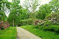 RHS Garden Harlow Carr - North Yorkshire, England - DSC01206.jpg