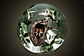 Raccoon Paperweight (2370727474).jpg