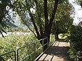 Ranzanico lago passeggiata 209.jpg