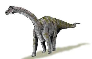 Lebendrekonstruktion von Rapetosaurus