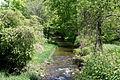 Raven Creek.JPG