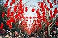 Red lanterns, Spring Festival, Ditan Park Beijing.JPG