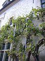 Reims - ancien collège des Jésuites, cour (10).jpg