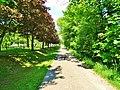 Remscheider Straße Pirna (28426755198).jpg
