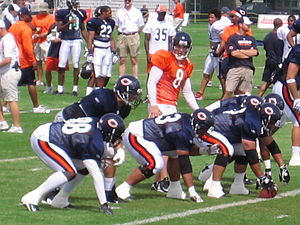 Rex Grossman - Grossman takes the snap during Training Camp in 2008