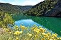 Rijeka Krka.jpg