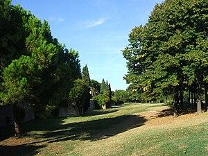 Rimini Parco Cervi