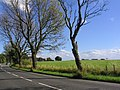 Ringley Road - geograph.org.uk - 42535.jpg