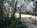 Rio Laranja Doce - Taciba SP - panoramio.jpg