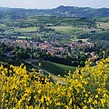 Riolo Terme Primavera.jpg