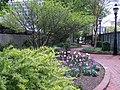 Ripley Garden in April (17427280908).jpg