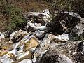 Rishikesh harikempty fallsdwar (400).JPG