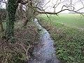 River Kennett - geograph.org.uk - 1671592.jpg