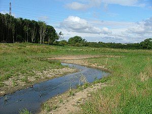River Ray, Wiltshire - River Ray new meandering channel at Rivermead, Swindon, Wiltshire.