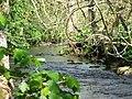 River Wansbeck - geograph.org.uk - 36591.jpg