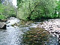 River confluence at Craig-y-nos Country Park - geograph.org.uk - 425192.jpg