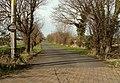 Road to Kiln Farm - geograph.org.uk - 339593.jpg