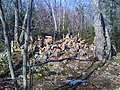 Rock cairns in Penwood State Park 3, 8 March 2010.jpg