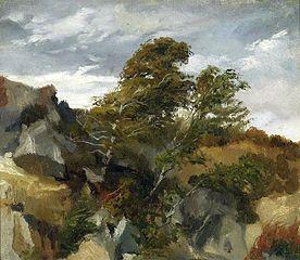 Landscape from Bortniki upon Dniester.