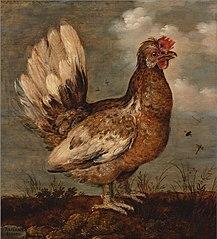 A Little Hen