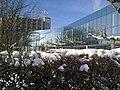 Rosenterrassen im Winter (1).jpg