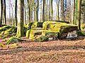 Ruaux. Château des fées. Blocs au centre du site.JPG