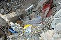 Ruins of Zarqawi's safehouse -d.jpg